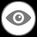 Icon_Analysis-2